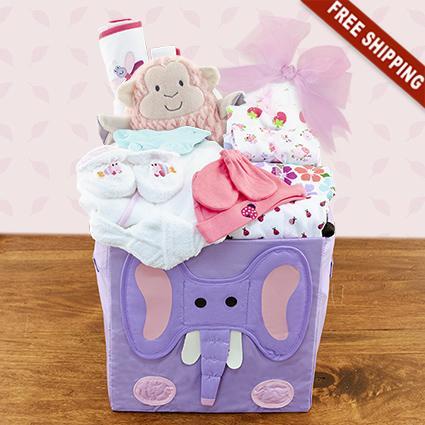 Baby Girl's First Wardrobe Gift Basket