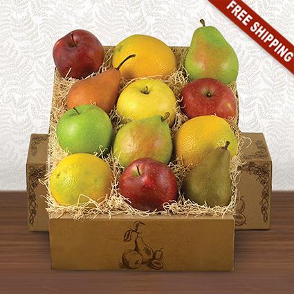 Fruitful Feast Gift Box