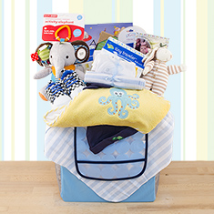 Grand Baby Boy Gift Basket