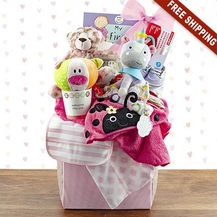 Grand Baby Girl Gift Basket