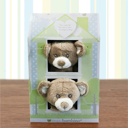 Mini Cuddly Pals Bear Blankies Gift Set
