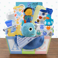 Welcome Home Baby Boy Medium Gift Basket