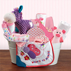 Welcome Home Baby Girl Large Gift Basket