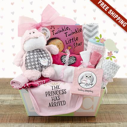 welcome home baby girl medium gift basket capalbos gift baskets