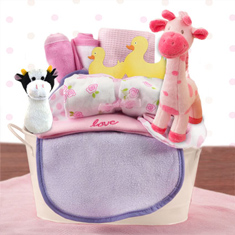 Welcome Home Baby Girl Starter Gift Basket