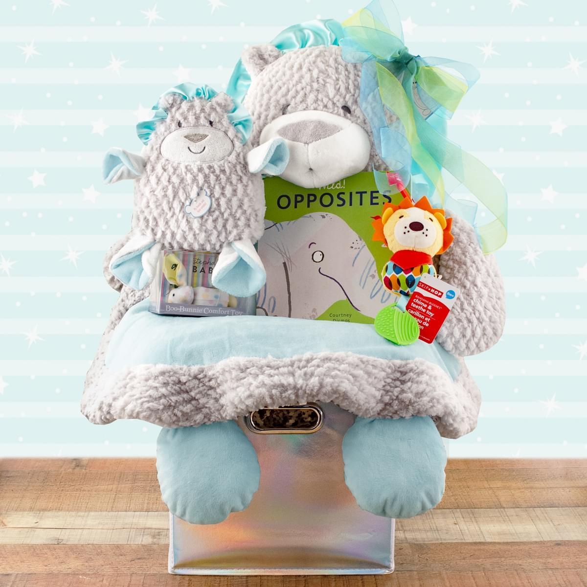 Lion Mat Fun Gift Basket