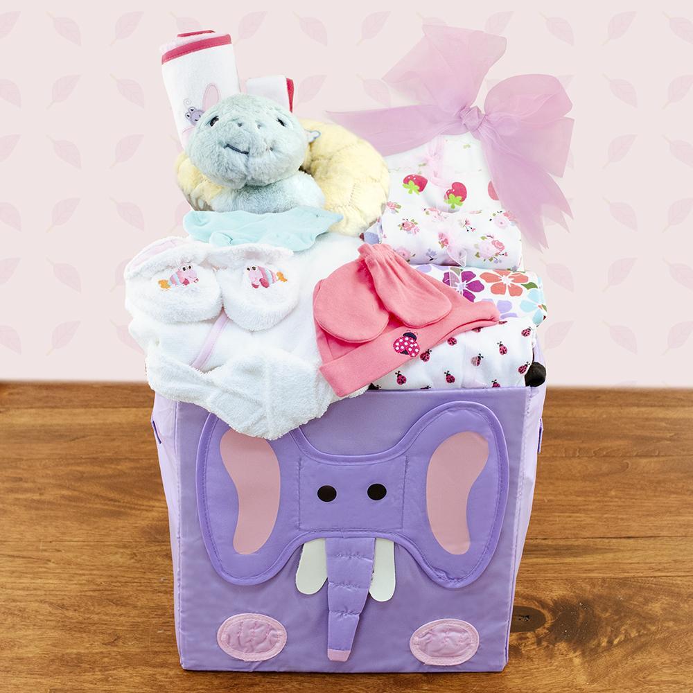 Baby Girls First Wardrobe Gift Basket